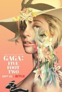 Lady Gaga: Nước Mắt Và Vinh Quang (2017)